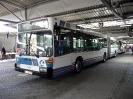 Bilder von Busse_2