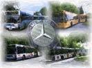 Bilder von Busse_3
