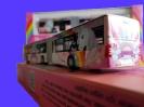 Sondermodell Einhornbus Linie 6 Hamburgerstrtaße_2